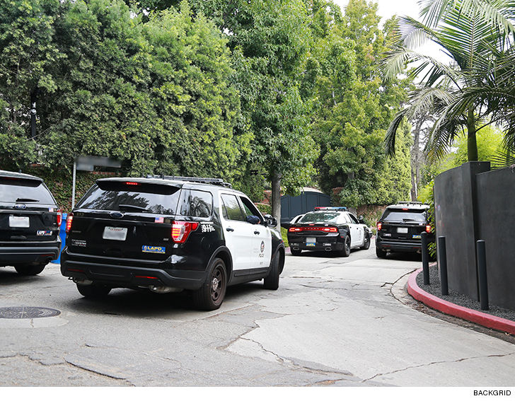 White Wash Spiegel : Miranda kerr and evan spiegels home swarmed by cops for suspected