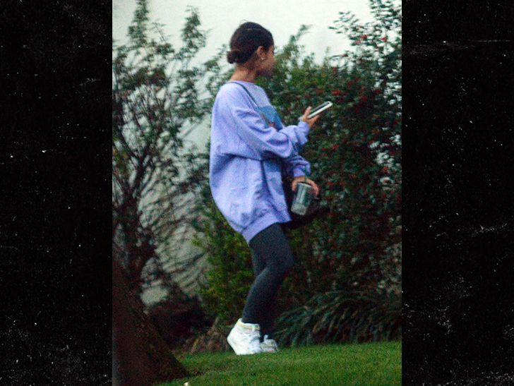 Ariana Grande Spending Time in The Bronx With Mother After Split With Pete Davidson