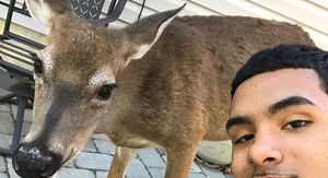 Deer Whisperer Brother Nature's Old Tweets Resurface, Reveal Rampant Racism