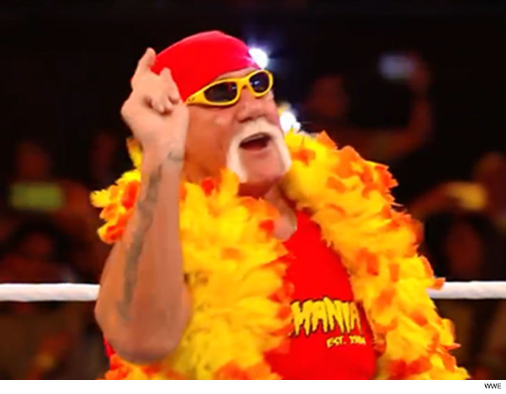 Hulk hogan and wwe-9170