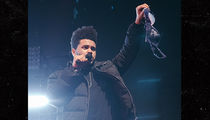 The Weeknd Catches Bra From Fan in Front of Bella Hadid