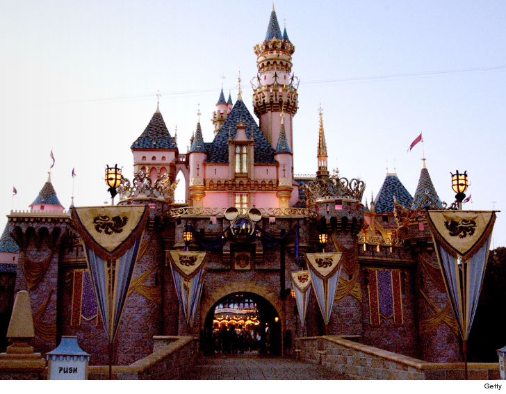 A new lawsuit claims the Disneyland Hotel hid a bed bug infestation, and a woman suffered a rash after staying there.