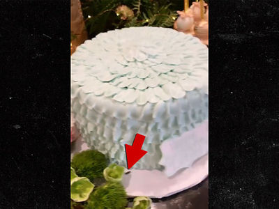 Kylie Jenner's Video Reveals Cockroach on Dream Kardashian's Birthday Cake