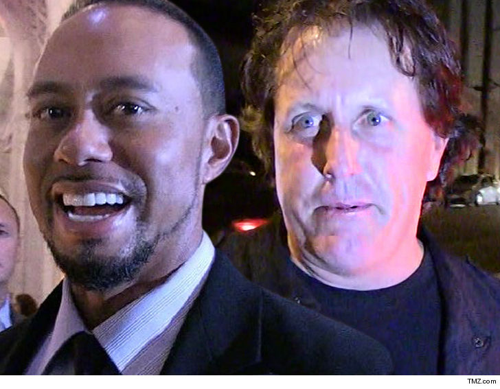 phil mickelson loses 200k bet to tiger woods but wins 9m in the