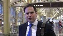 Marco Rubio Blasts 'Stupid' FSU Fan Over Racist Willie Taggart Image