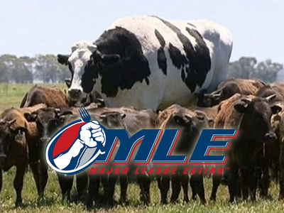Major League Eating Wants To Devour Knickers, the 2,800-Pound Steer