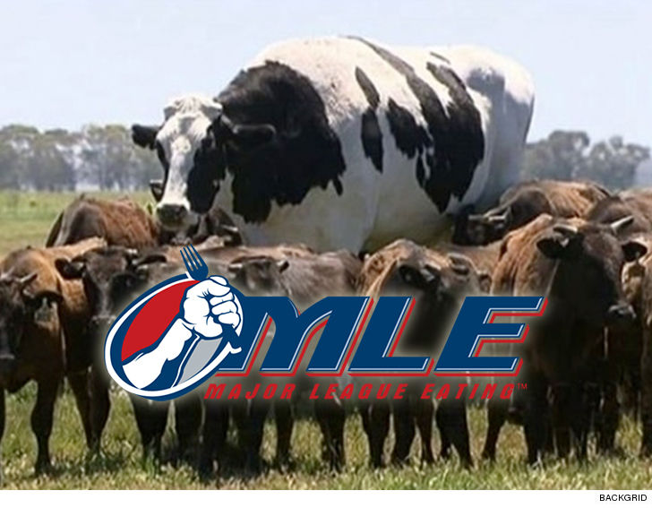 Major League Eating Wants To Devour Knickers The 2800 Pound Steer You Know That Big Ass