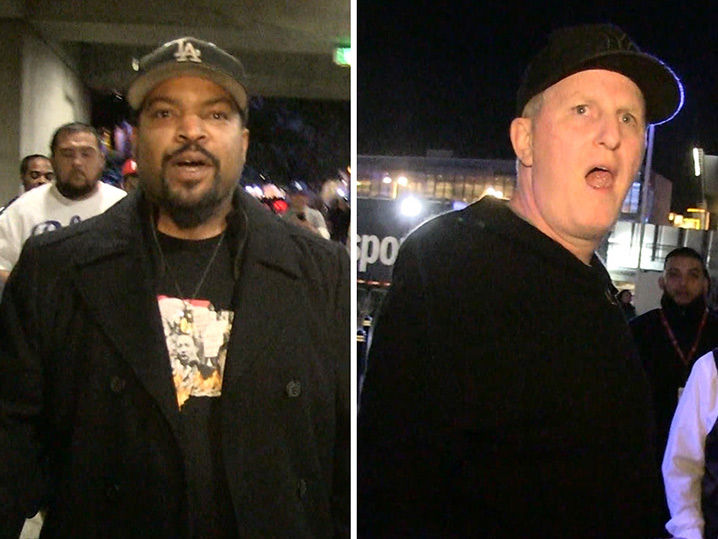 Ice Cube was less than pleased with the outcome of Wilder vs. Fury.