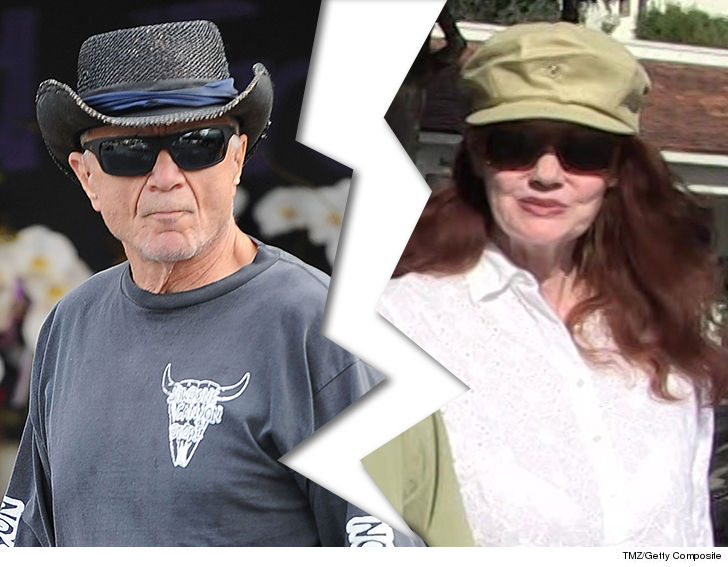 Robert Blake has filed for divorce from his third wife, Pamela Hudak, just  a year after the two strolled into Beverly Hills City Hall to obtain their  ...