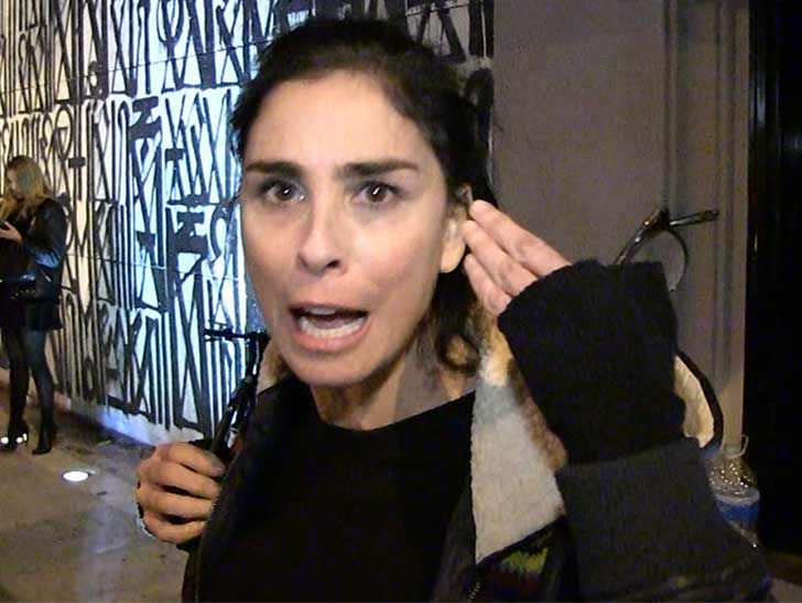 Sarah Silverman I Used to Say 'That's So Gay' I'm Done w/ That!!!