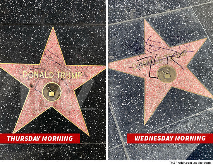 Donald Trump's Hollywood Walk of Fame Star Vandalized With