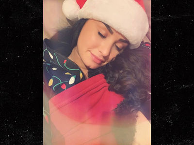 Demi Lovato Celebrates Christmas with Family