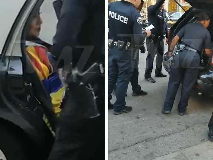 Snow White Arrested By LAPD For Aggressive Panhandling on Hollywood Blvd.