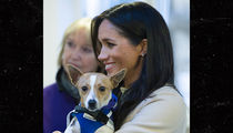 Meghan Markle Poses with Cute Dog at Animal Welfare Charity