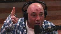 Joe Rogan Says 'Ace Ventura' Is 'Insanely Transphobic'