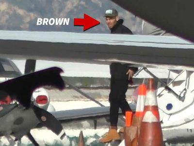 Chris Brown Back in U.S. After Release in Paris Rape Case