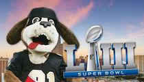 Saints Fans Party for #BoycottBowl Ahead of Super Bowl LIII