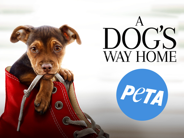 6a187fc751c8c Owners of  A Dog s Way Home  Star Sue PETA for Defamation