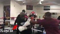 Floyd Mayweather's Dad Cracked in Boxing Sesh, Knocked Down Hard