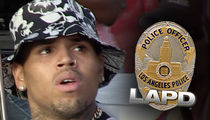 Cops Do Welfare Check on Chris Brown After He Posts Address in Offset Beef