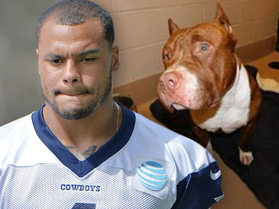Dak Prescott Warned Of Dangerous Dogs Twice Before Violent Attack