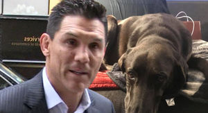 UFC's Frank Shamrock Abandons Dog At Airport, Animal In Good Care Now