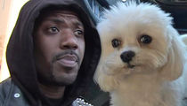 Ray J Says His Missing Dog Boogotti Was Kidnapped