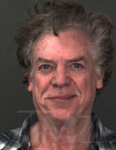 Christopher McDonald was arrested on DUI charges after driving his Porsche off the highway, taking out a gas meter and crashing into an embankment near Lake Arrowhead, CA.
