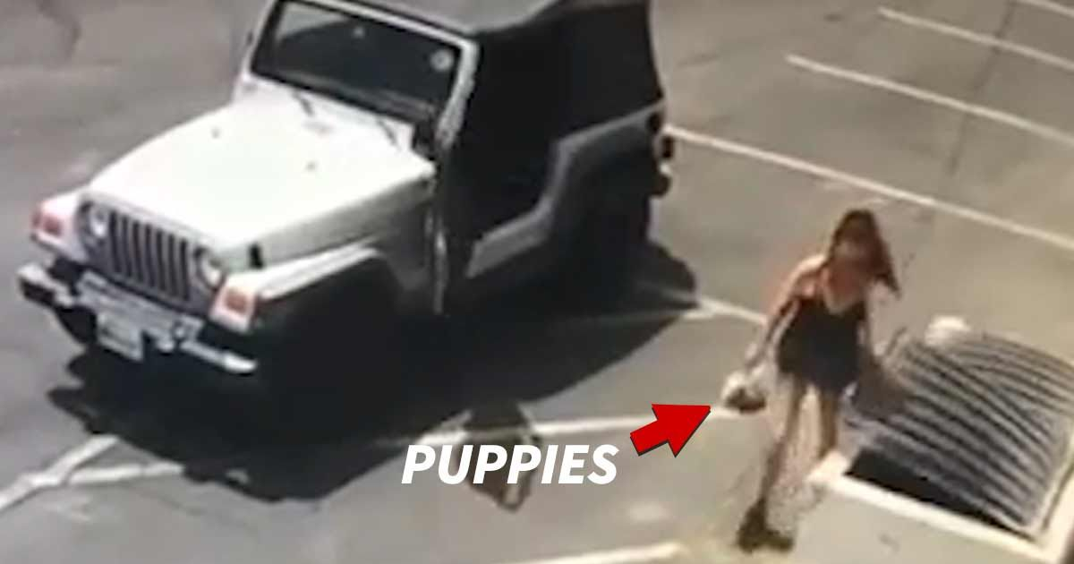 Caught on Video Coachella Woman Hit With 7 Felonies For Dumping Puppies in Trash