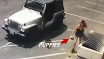 Coachella Woman Arrested for Dumping Puppies in Trash Bin