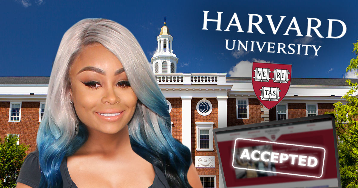 26cccc3675538 Harvard Says Blac Chyna was Never Admitted to Online Business School ...