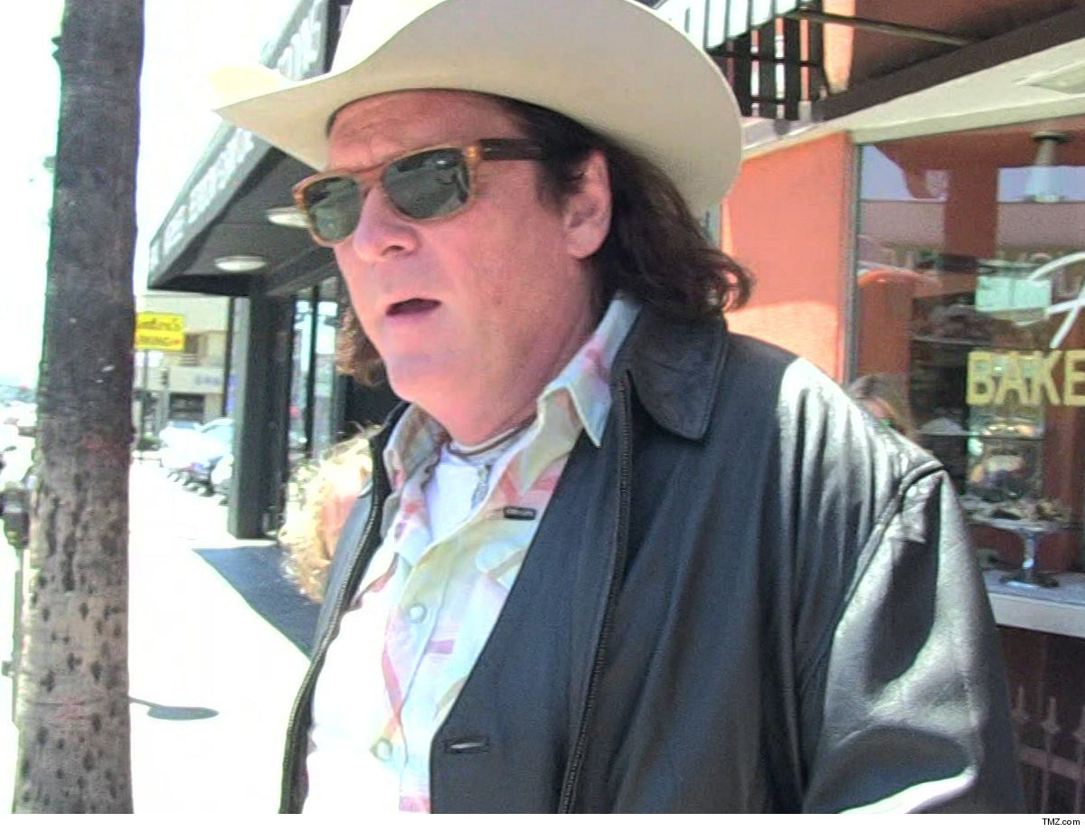 Michael Madsen Loses $100k Movie Role ... Because of DUI Charge