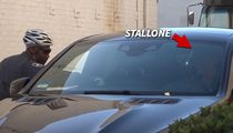 Sylvester Stallone Gets Parking Ticket, but Offers Sage Advice Afterward