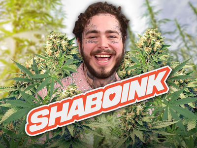Post Malone Getting into Weed Business, Launching Company Called Shaboink