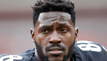 Antonio Brown's #84 Steelers Number Given To Undrafted Tight End