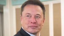 Elon Musk Claims Diver Suing Him Over 'Pedo' Comment Out for Fame and Cash