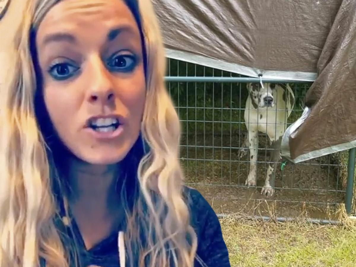 'Teen Mom 3' Star Mackenzie McKee Mom Rips Neighbor for Dog Report ... Swears Hank 'Never in Danger' from Storms