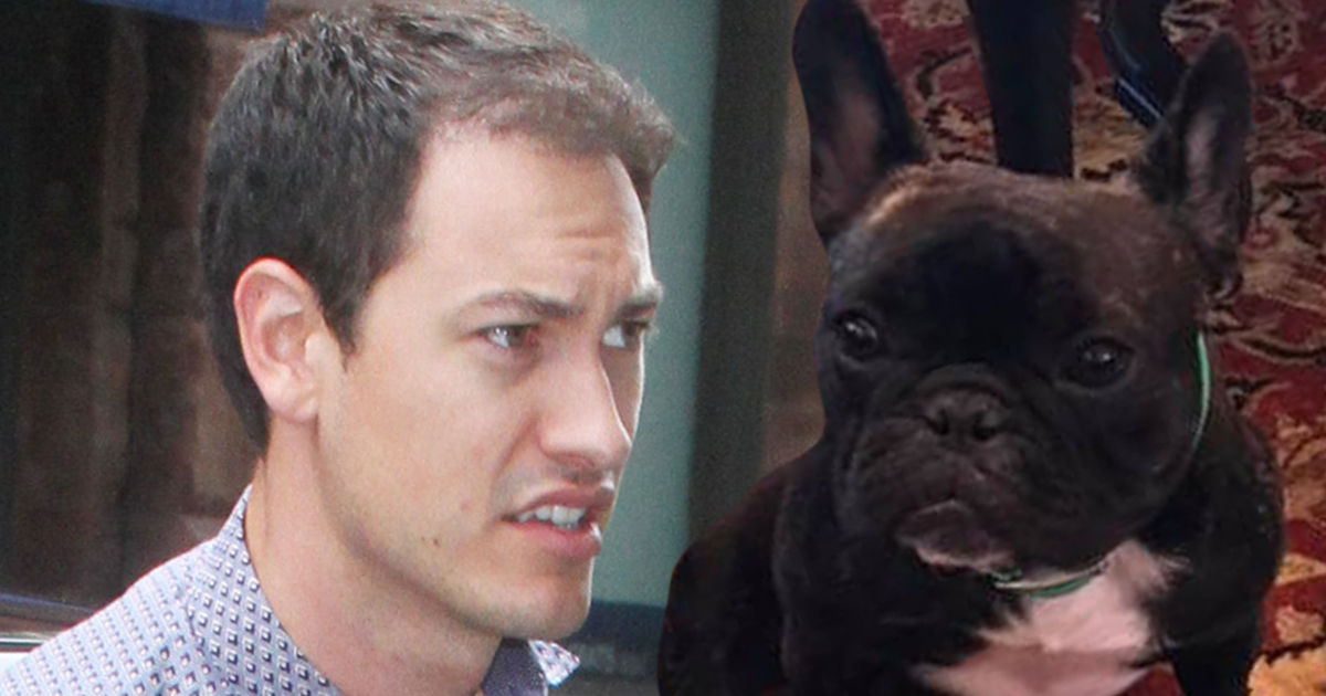 NASCAR's Joey Logano Searching For Lost Family Dog, Fears Pup Was Stolen