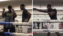 Jussie Smollett 'Attacker' Abel Working with Floyd Mayweather Jr.'s Trainer