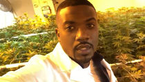 Ray J Getting into Weed Business, Invests $5,000,000 to Launch Own Company