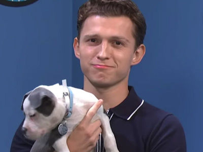 Watch Tom Holland Help ADORABLE Rescue Puppies Get Adopted
