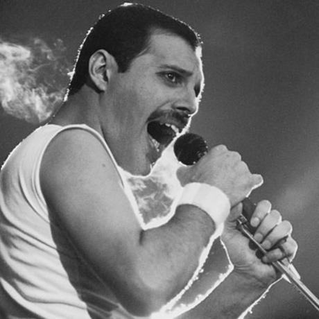 Freddie Mercury - Died at Age 45 September 5, 1946 - November 24, 1991