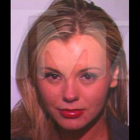After crashing her car, Bree Olson - a former goddess - was arrested in 2011 for a drunk driving charge